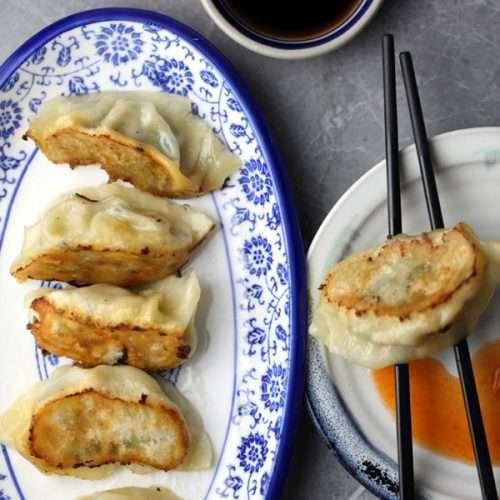 Chinese Lightly Fried Dumplings